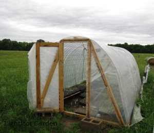 greenhouse-BLOG