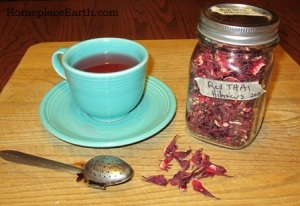 Red Thai Roselle tea